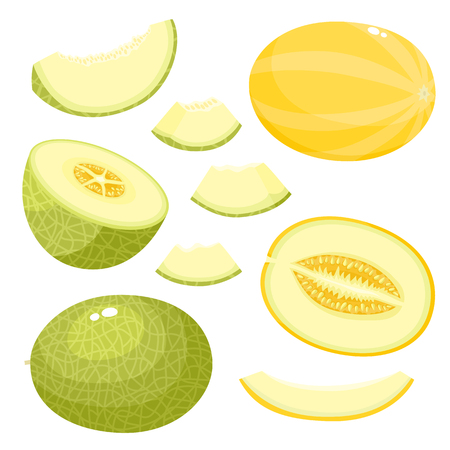 Bright vector set of juice melon isolated on white background.