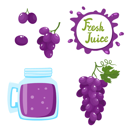 Vector set of grapes juice and berries isolated on white