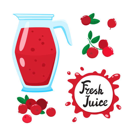 Juice with cranberry in glass jug, vector cartoon card Vettoriali
