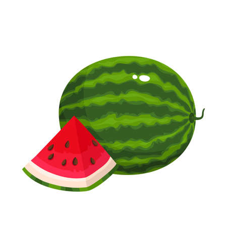 Bright vector illustration of colorful slice and whole of juice watermelon. Fresh cartoon berry isolated on white background.
