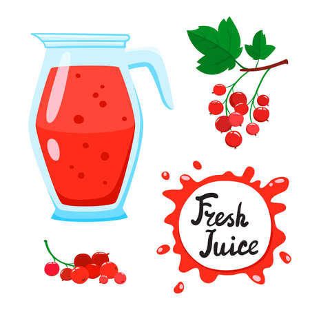 Juice with Red currants in glass jug, vector cartoon card