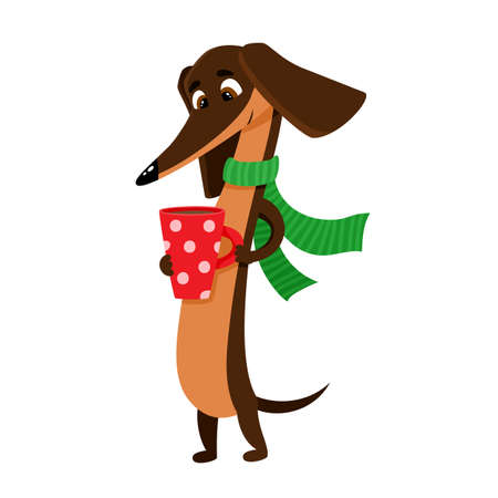 Vector illustration of cartoon brown funny dachshund isolated on white background.