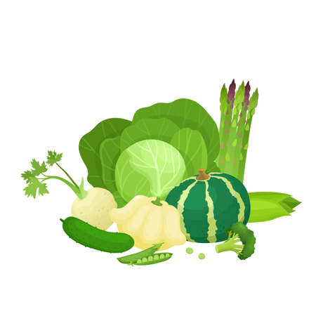 Bright vector illustration of colorful green vegetables.