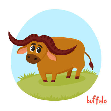 Buffalo bull in cartoon style. Vector illustration of wild animal isolated on white background. Cute zoo alphabet, letter B. Illustration used for magazine, poster, card, book, web pages.