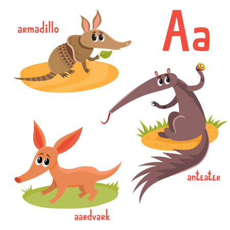 Exotic wild animal in cartoon style. Vector illustration of armadillo, anteater, aardvark isolated on white. Cute zoo alphabet, letter A. Illustration used for magazine, poster, card, book, web pages.