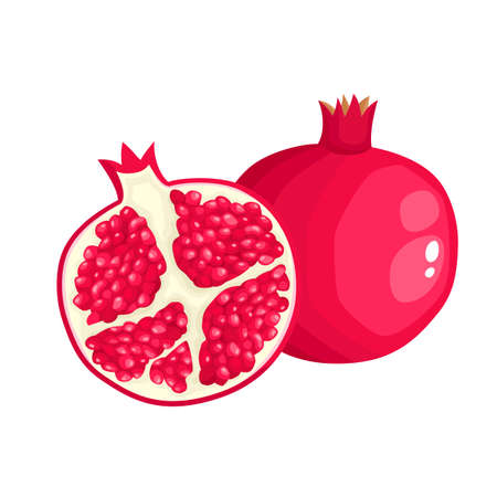 Bright vector illustration of colorful half, slice and whole of juice pomegranate. Fresh cartoon fruit isolated on white background.