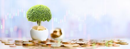 Coins in sack and plant glowing in savings money, Passive income, Pension and retirement concept. Investment in business development for growth and success, dividend payment to investors.