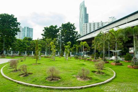 public park: Parque p�blico