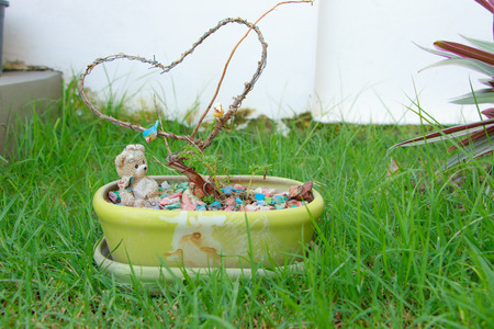 decorate: Made decorate in garden