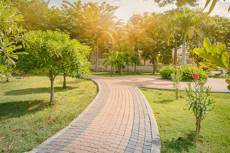 jogging track: Brick block jogging track in the garden with sunlight