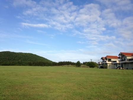 perfect grass field