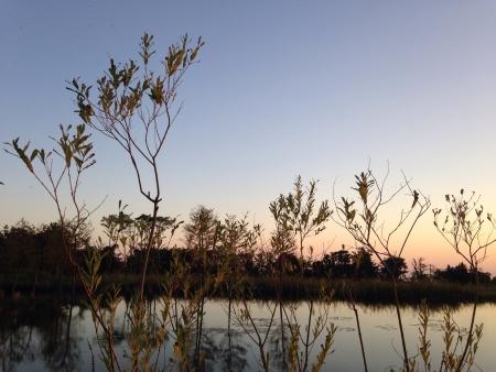 the beautiful scene of the sunset Stock Photo