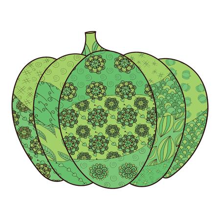 carotene: Green pumpkin vector illustration. Whimsical line art.