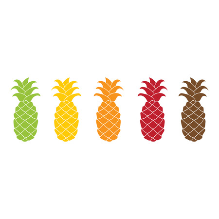 brawn: Pineapple icon set colorful flat design isolated on white background. Vector illustration. Green, yellow, orange, red, brawn silhouette. Illustration