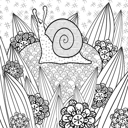 Cute Snail Adult Coloring Book Page In Whimsical Garden Line Art Vector Illustration