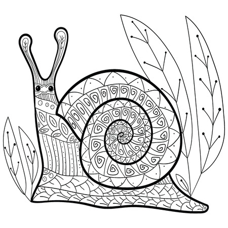 whimsical: Cute snail adult coloring book page. Happy smiling snail in forest. Whimsical line art. vector illustration.