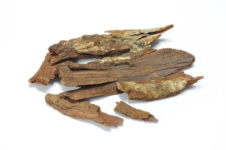 angelica sinensis: Dried Herbs, Cinnamomum bejolghota (Ham.) Sweet on white background Stock Photo