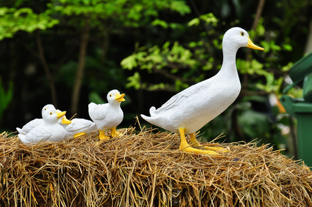 family fun: A family of doll duck in the garden. Stock Photo