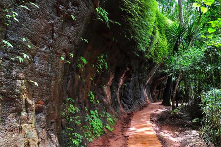 The corridor loop around the sandstone mountain, Phu thok temple district Bueng Kan, Thailand Standard-Bild