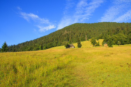 Nature in the mountains, beautiful scenery, beautiful mountain scenery, the Carpathian Mountains. Ukraine Stock fotó