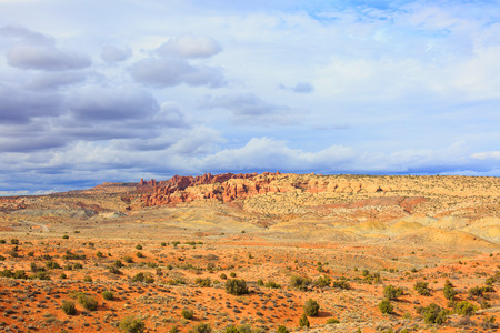 Wide open desert space with abundant spring greenery with blue sky and red mountains in distance