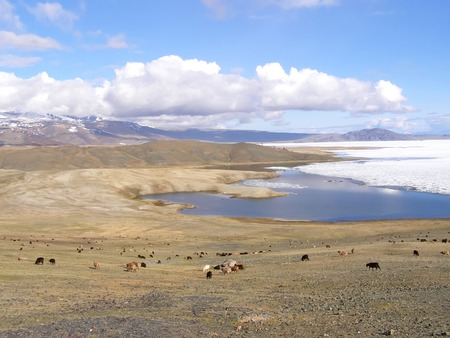 Mongolia natural landscapes, surrounded by mountains and rocks and wild goats.