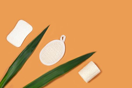 Set of eco-friendly sponges for body care on the yellow background. Zero waste concept for self-care . Plastic-free, organic, body care items .