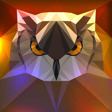 fulvous: Vector illustration face of a owl Illustration