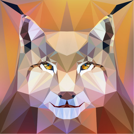 Vector illustration face of a lynx