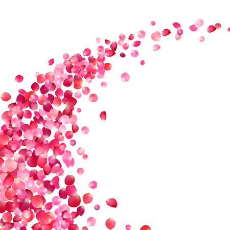 white background with pink rose petals vortex Vectores