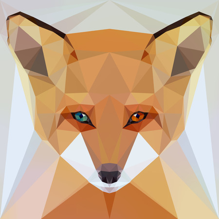 fox: face of a fox with eyes heterochromia