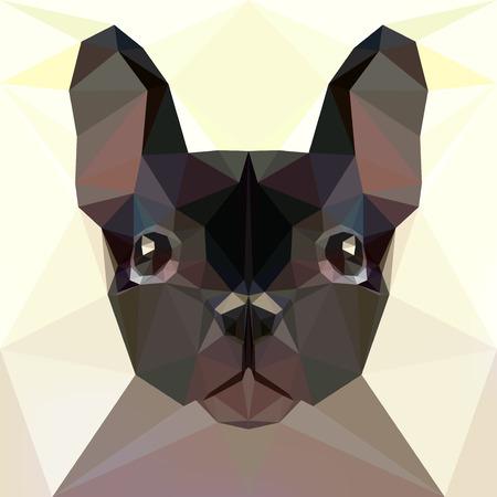 bulldog: Face of a French bulldog Illustration