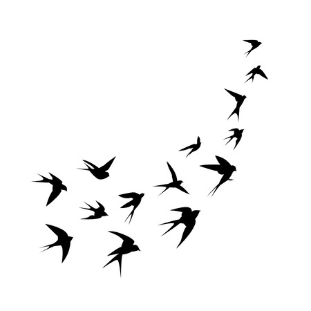 A flock of birds swallows go up. Black silhouette on a white background. Vector illustration.