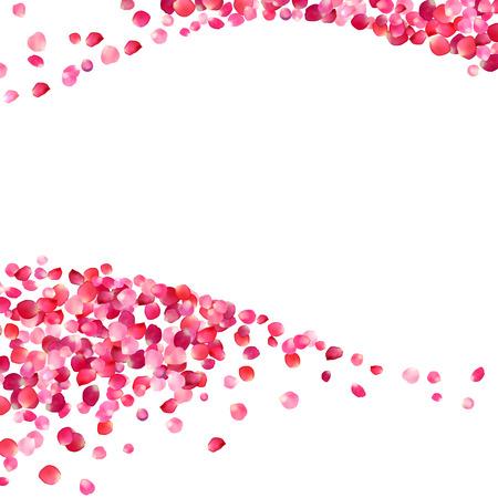 분홍색과 흰색 배경 꽃잎 파도 장미