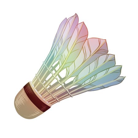 badminton: Vector illustration: feather shuttlecocks for badminton isolated on white background