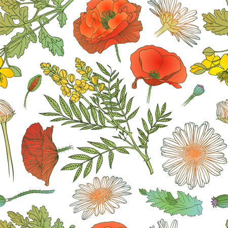 Seamless pattern - assorted flowers Illustration