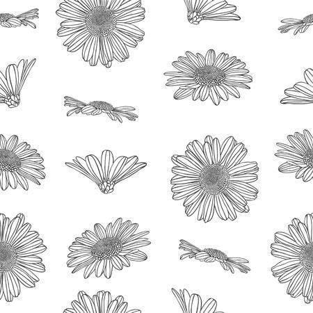 chamomile: Linear seamless pattern - chamomile flowers