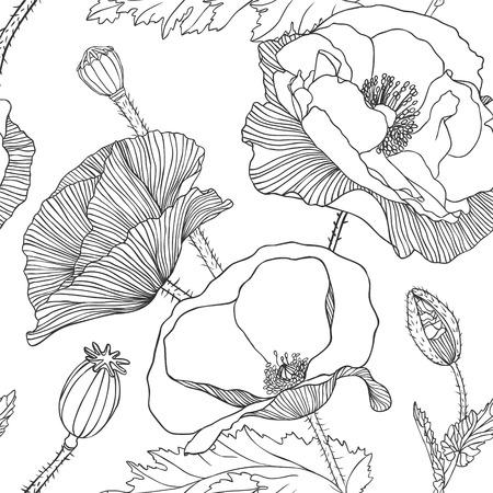 dessin fleurs: Linéaire seamless pattern - fleur de pavot.
