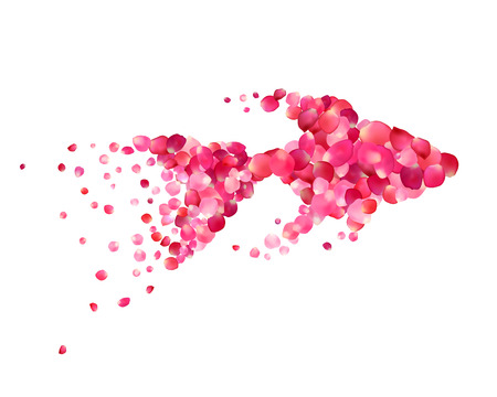 pink rose petals: Silhouette of a goldfish of pink rose petals isolated on white