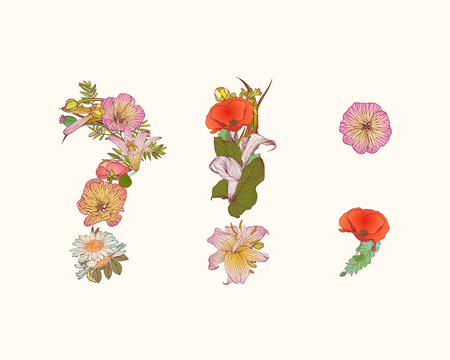 lily flowers collection: Vector alphabet of flowers. Floral letter Z
