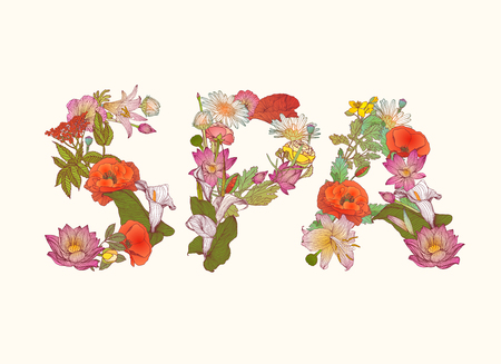 Word SPA of flower letters. Vector detailed illustration