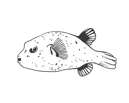black fish: Vector  Black on white illustration - Fish ball Tetradon.