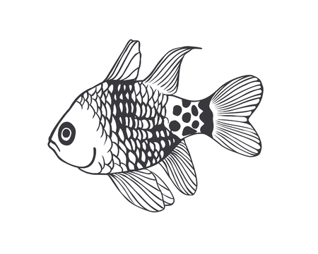 tropical: Vector Black on white  illustration -  tropical fish