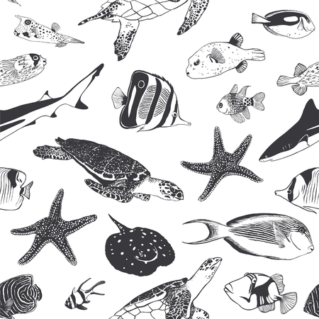 surgeon fish: Vector Black and white Seamless summer pattern. Sea and ocean inhabitants. Fish, shark, turtle.