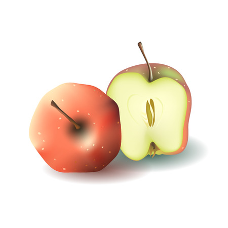 two and a half: Two red vector apples. Whole apple and half of apple