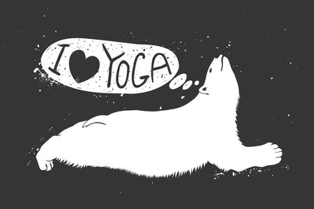 Polar bear doing urdhva mukha svanasana. I love yoga