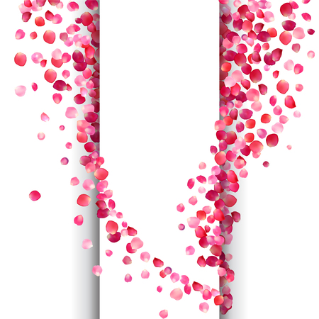 Vector white background with pink rose petals waves Illustration