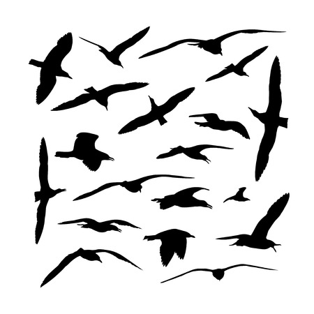 wingspan: Vector set of sea gull birds silhouettes