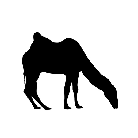 camel silhouette: bactrian camel silhouette. Vector black on white