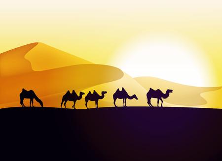 Caravan of camels in the desert. Vector illustration Illustration